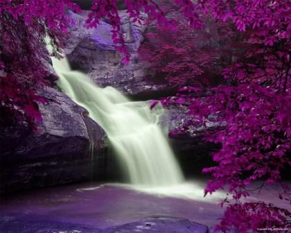 cascadeviolette.jpg