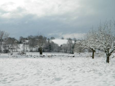 Pensées blanches de janvier 2012 DSCN02241